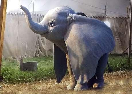 Não é bem assim que a gente lembra do Dumbo dos desenhos animados...