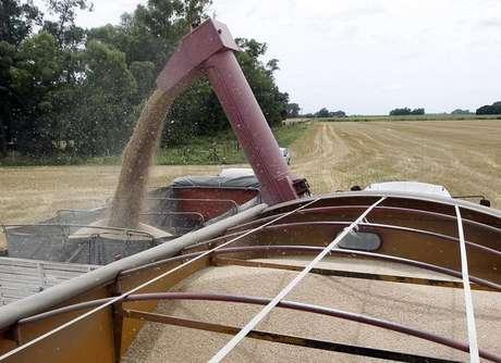 Caminhão sendo carregado com grãos de milho  18/12/2012  REUTERS/Enrique Marcarian