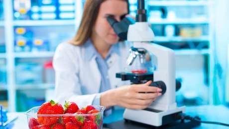 Segundo pesquisadora da USP, Brasil permite quantidade muito alta de agrotóxicos em alimentos e na água em relação à União Europeia