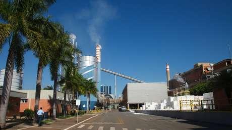 Fábrica da Suzano Papel e Celulose produz 20 mil toneladas por ano de um dos principais produtos usados na fabricação da cola sustentável