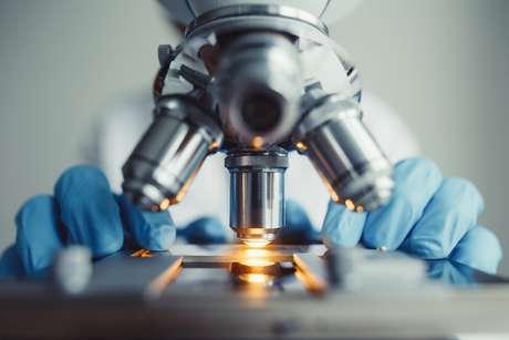 Alunos têm atividades em microscópio