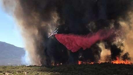 Avião combate chamas de incêndio em floresta da Califórnia 04/07/2018 Cortesia do Departamento Florestal e de Proteção contra Incêndios da Califórnia/Divulgação via Reuters