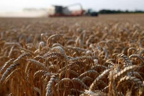 Colheita de trigo em Marquion, perto de Cambrai, França 18/07/2017 REUTERS/Pascal Rossignol