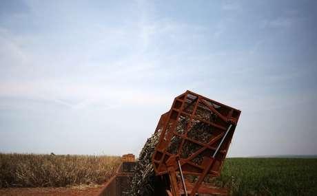 Caminhão é carregado com cana-de-açúcar em Ribeirão Preto, São Paulo 15/09/2016 REUTERS/Nacho Doce