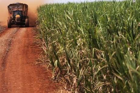 Trator carrega cana-de-açúcar em plantanção em Ribeirão Preto, São Paulo, Brasil 15/09/2016 REUTERS/Nacho Doce