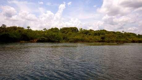 Pesquisadores da Universidade de Exeter descobriram que houve interferência do homem na Amazônia há 4,5 mil anos