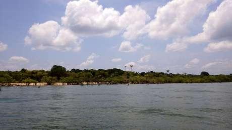 A pesquisa publicada nesta segunda-feira mostra que presença de humanos há 4,5 mil anos teve impacto durarouro na Amazônia
