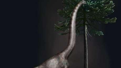 Ilustração de um braquiossauro; dinossauro foi um dos maiores a pisar na Terra