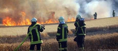 Especialistas apontam ligação entre aquecimento global e incêndios florestais