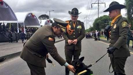 Sombra participou de mais de 300 operações com a polícia antidrogas da Colômbia
