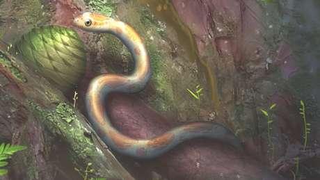 A pele de um segundo espécime foi encontrada