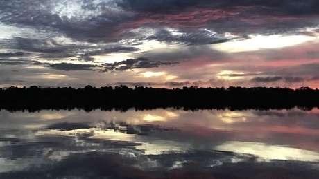 Na bacia do rio Içana, indígenas esperam que volta das ariranhas sinalize aumento da oferta de peixe