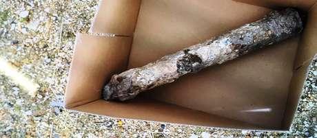 Cilindro de metal encontrado em jardim era uma antiga bomba incendiária