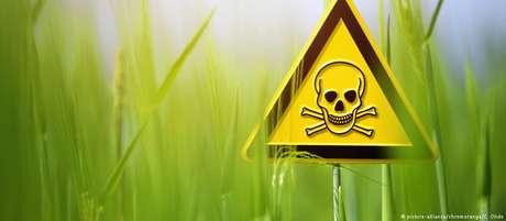 Júri condena Monsanto por não alertar clientes sobre possíveis danos à saúde