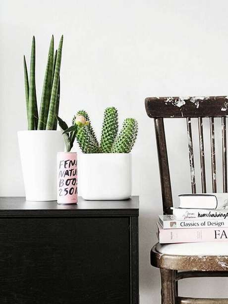 10. Os vasos brancos com cactos são ótimos para ambientes mais clean.