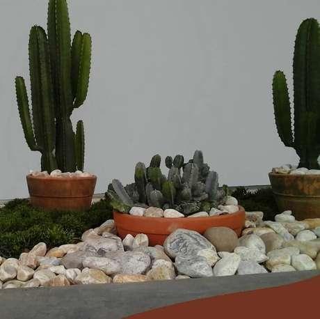 18. A Alalou projetou um jardim externo desértico com cactos e pedras, que pode ser facilmente adaptado para varandas.