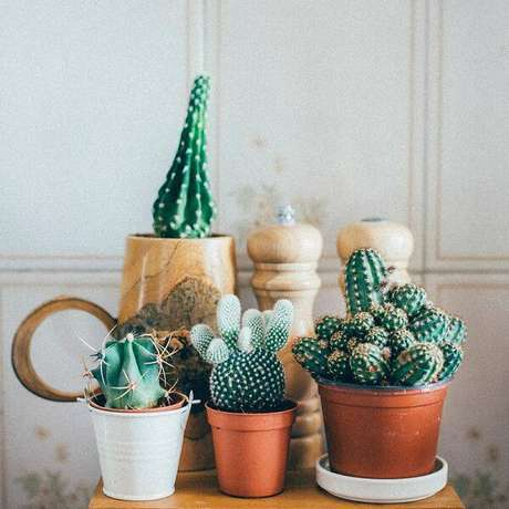 20. Os vasinhos com mini cactos podem ser colocados em qualquer lugar e são fáceis de combinar nos ambientes.