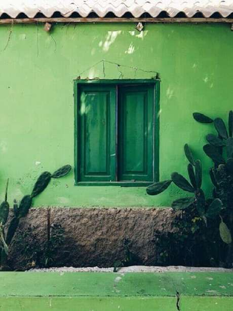 44- Os cactos de porte grande podem decorar as fachadas de casas. Fonte: Martin Widenka