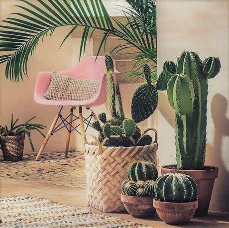 50- A decoração de varanda Gourmet é feita com cesta de vime com vasos de cactos. Fonte: Pinterest