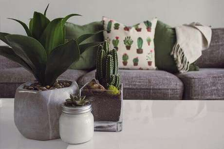 51- Vaso de vidro transparente com cactos e plantas em vasos cerâmicos decoram a mesa. Fonte: Decorando Tudo