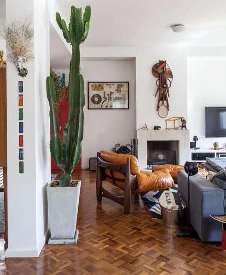 59- Os cactos são exóticos e se destacam na decoração de sala de estar. Fonte: Pinterest