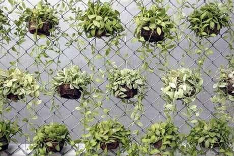 42 – Jardim vertical com vasos de planta.
