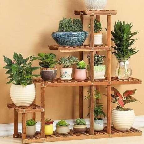 31 – Estante com vários vasos e tipos de plantas diferentes.