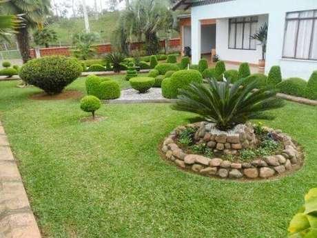 36 – Plantas ornamentais para jardim.
