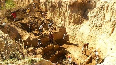 Os ossos dos elefantes fora encontrados por pesquisadores nessa região de Madagascar
