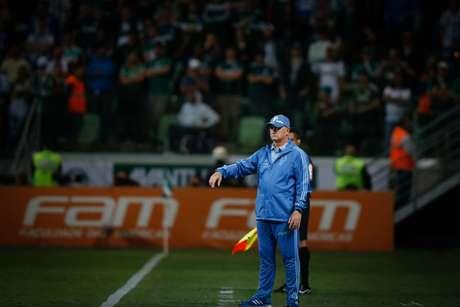 O técnico do Palmeiras, Luiz Felipe Scolari, à beira do campo contra o Cruzeiro