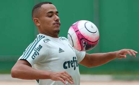 Papagaio começa a conquistar espaço no Palmeiras