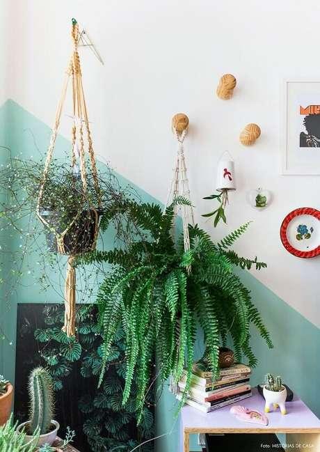 11- A samambaia pode ser pendurada na parede com suportes. Fonte: Pinterest