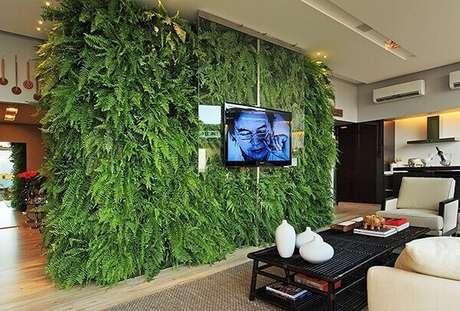 40- O jardim vertical com samambaia divide os ambientes. Fonte: Lorena Fontoura