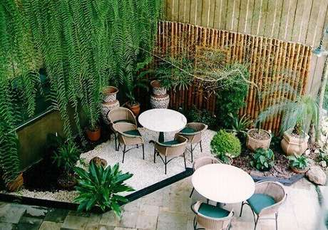 42- A samambaia de metro complementa a decoração do jardim. Fonte: Pinterest
