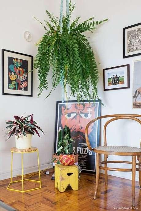 13- A samambaia no teto decora a sala simples e moderna. Fonte: Pinterest