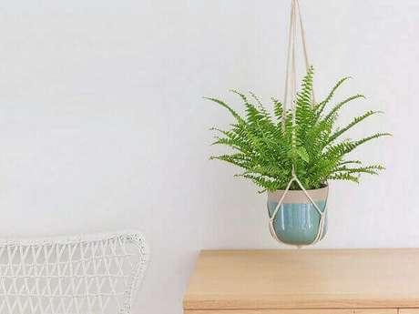 58- A samambaia plantada em pequeno vaso suspenso sobre a mesa decora a varanda. Fonte: Interflora