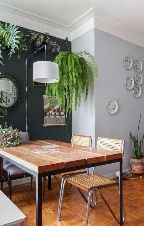 59- A Samambaia pendurada no canto valoriza a sala de jantar. Fonte: Pinterest