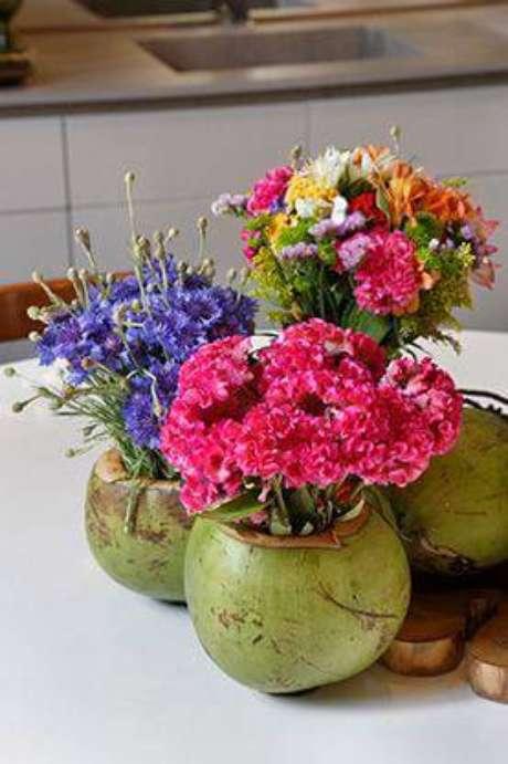 49. Cocos podem virar vasos criativos e coloridos.