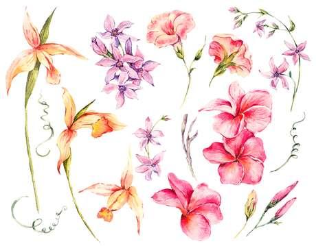 Primavera, para mim, une transformação e esperança.