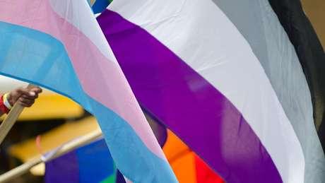 Bandeira que representa a assexualidade traz as cores preta, cinza, branca e roxa