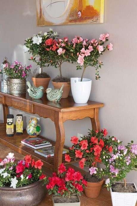 1- A coleção da flor azaleia decora a sala sobre o aparador de madeira. Fonte: Revista Natureza