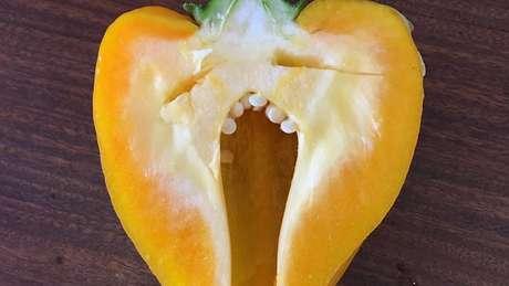 Um pimentão bocejando?