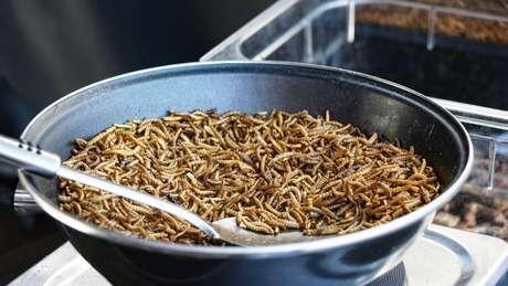 Uma panela repleta de larvas; pelo mundo, há apostas de que o consumo de insetos irá muito além de experiências exóticas, permitindo a ampliação da segurança alimentar