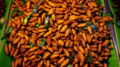 Larvas de bicho-da-seda em prato típico da Tailândia; em países ocidentais, a entomofagia enfrenta resistência cultural