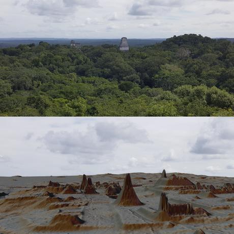 Mapeamento a laser identificou mais de 61.480 construções escondidas em meio à floresta
