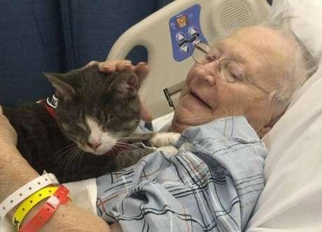 Donny, ogato cego que ajuda a 'curar' pacientes idosos.