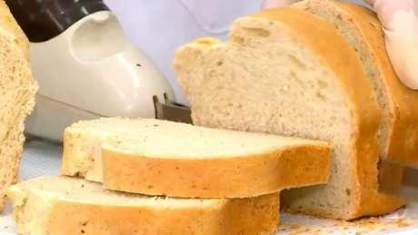 Para fazer os pães, as pesquisadoras trituraram as baratas em um moinho de bolas