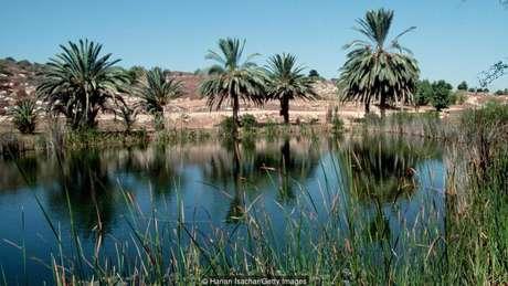 A reserva natural de Neot Kedumim, em Israel, é uma recriação da paisagem dos tempos bíblicos