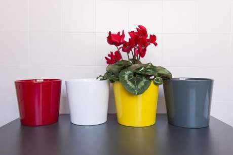 26. Cachepots de cerâmica coloridos. Foto de PS do Vidro