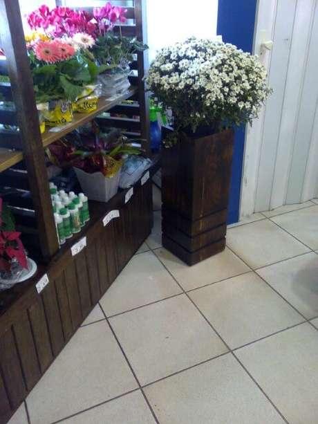 33. Cachepot de madeira alto em loja. Foto de Tiago Dutra